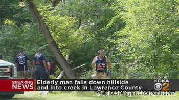 Elderly Man Falls Over Hillside Into A Creek In Lawrence County