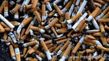Environnement : interdiction de fumer sur les plages de Marseille - Franceinfo