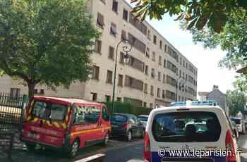 Féminicide à Chevilly : l'homme de 29 ans s'est acharné sur son épouse - Le Parisien