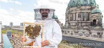 Union Investment siedelt Bienen an: Umweltprojekt mit 33 Immobilien gestartet - finanzen.net