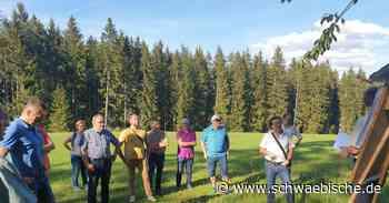 Waldsitzung: Gemeinderat Rietheim-Weilheim billigt Forstwirtschaftsplan - Schwäbische