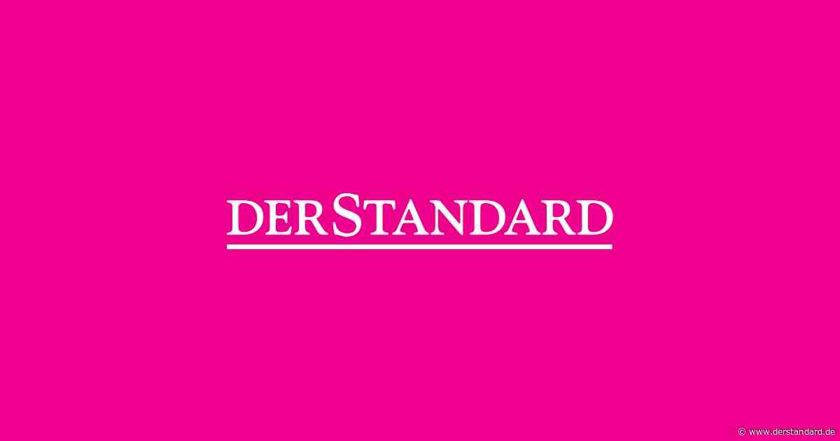 """Spektakulärer Fund: Angriff einer """"Höllenameise"""" in Bernstein verewigt - DER STANDARD"""