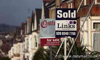 Stamp duty cut adds £30,000 to average property asking price with sales up 20%