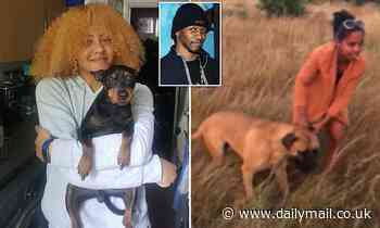 Owner of 'devil dog' is anti-gang social worker, 36, who has a son with grime rapper Giggs