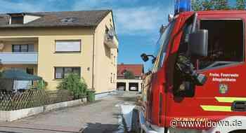 Alteglofsheim - Schwere Brandstiftung: 53-Jähriger zu über einem Jahr Haft verurteilt - idowa
