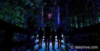 Mont Tremblant's illuminated nature night walk is now open | Curated - Daily Hive