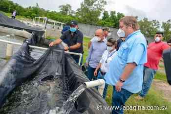 MAG apoya a acuicultores afectados por covid-19 en San Pablo Tacachico, La Libertad - Diario - Diario La Página