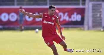 Nadiem Amiri fehlt Bayer Leverkusen wegen Corona-Kontakt gegen Glasgow - SPORT1