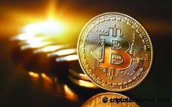 """Winklevoss: """"Bitcoin es más que oro, es una fuente de verdad"""" - CriptoTendencia"""
