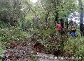 Declaran calamidad pública por las lluvias en San Pedro de Cartago - diariodelsur.com.co