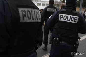 Saint-Fargeau-Ponthierry. Ivre, il aurait mordu des policiers qui tentaient de l'interpeller - actu.fr