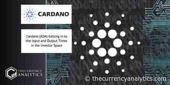 Cardano (ADA) Getting in to the Input and Output Times in the Investor Space - The Cryptocurrency Analytics