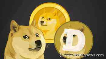 Rise in Dogecoin (DOGE) Not Continuing - Somag News