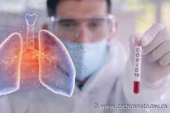Case of COVID-19 reported in Vegreville - Cochrane Today