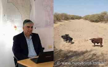 """Maximino Abrego: """"Los efectos de la sequía se están haciendo sentir en los Llanos Riojanos"""" - Nueva Rioja"""