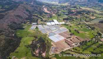 El Instituto Agustín Codazzi habilitó como su nuevo gestor catastral a Cundinamarca - Agronegocios