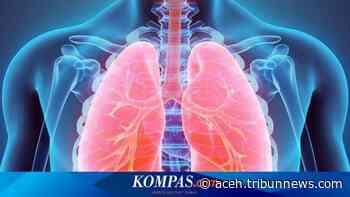 Pasien Kanker Otak di Pune Sumbang Organ Tubuh Sebelum Meninggal, Pasien di Hyderabad Selamat - Serambinews.com