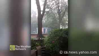 Heavy rain and wind in Sainte-Julie, QC - Yahoo News Canada