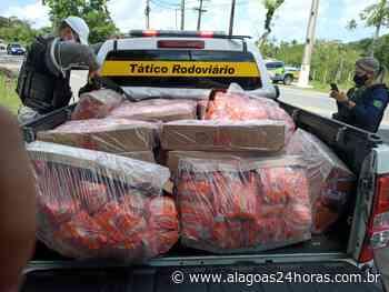 Flagrante: mais de duas toneladas de frango são apreendidos em Satuba - Alagoas 24 Horas
