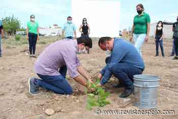 Plantan el primer árbol del Pulmón Ecológico en La Cruz de Elota - Revista ESPEJO