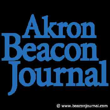 A Stroll Through the Garden: Bagworm in arbor vitae revisited - Akron Beacon Journal