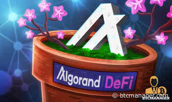 DeFi Craze Continues as Algorand (ALGO) Forays Entry into the Blossoming Space - BTCMANAGER