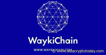 WGRT Guide: WaykiChain (WICC) Governance Right Treasure - asiacryptotoday.com