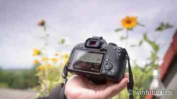 Canon EOS 850D: Schnelle DSLR mit Schwächen bei 4K-Videos - WinFuture