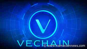 VeChain (VET) Strengthens After Half-Yearly Flat Momentum - NameCoinNews