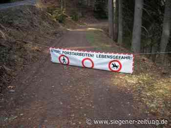 Sperrung wegen Forstarbeiten: Umleitung am Rothaarsteig - Netphen - Siegener Zeitung