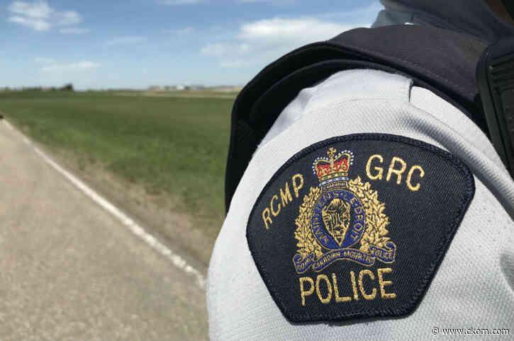 Woman dead after bear attack north of Buffalo Narrows - CKOM News Talk Sports