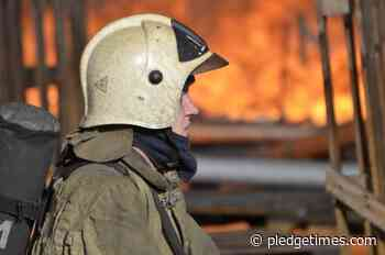 In Birobidzhan, a cat rescued its owners during a night fire - Pledge Times