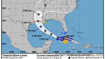Tormenta Laura causará fuerte oleaje en la costa oeste de Florida - El Nuevo Herald