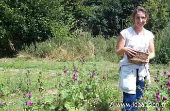 L'herboriste lance sa gamme de produits bio à Feucherolles - Le Parisien