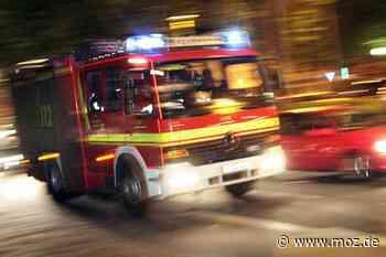 Zeugen alarmieren Feuerwehr: Wiese brennt neben der A10 in Vogelsdorf - Märkische Onlinezeitung