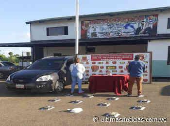 Arrestada pareja en Chaguaramas por transportar 11 panelas de cocaína - Últimas Noticias