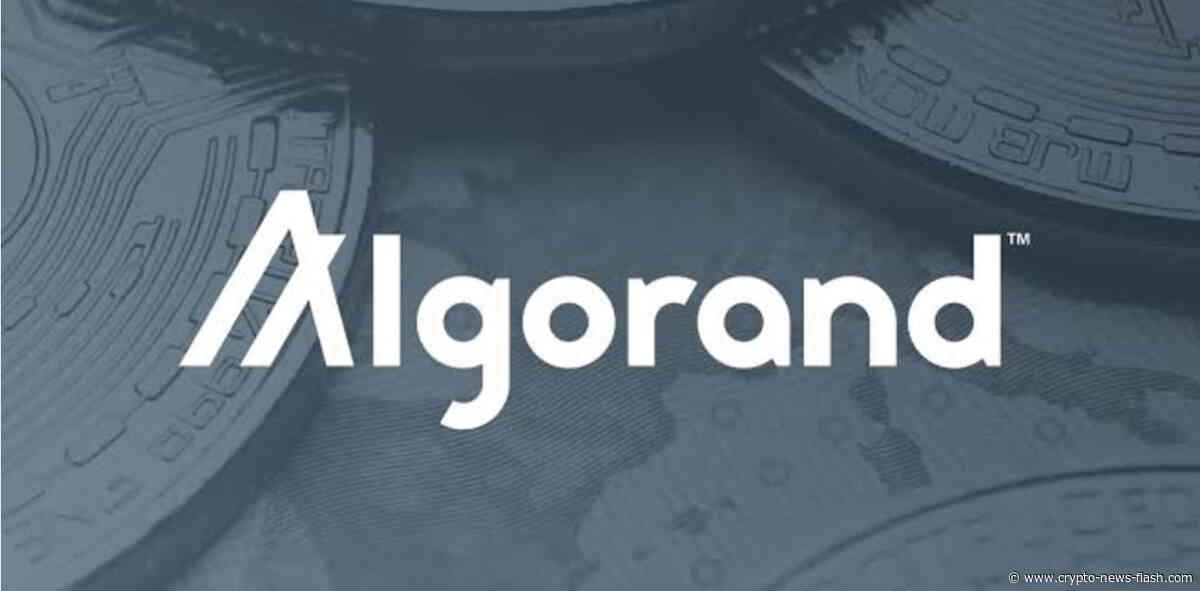 Coin-Vorstellung: Was steckt hinter dem Algorand (ALGO) Projekt - Crypto News Flash