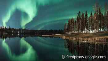 Shedding some light on an aurora season like no other