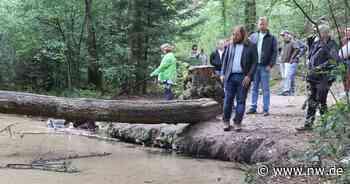 Anton Hofreiter will den Nationalpark Senne - Neue Westfälische