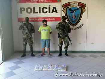 Intervienen mototaxista con 15 kilos de PBC en la carretera Tarapoto – Yurimaguas - Diario Voces