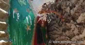 ¡Arbolón parte capilla y deja intacta a Virgen de Guadalupe! - ELIMPARCIAL.COM