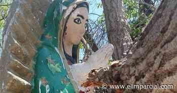 Álamo derriba capilla e imagen de la virgen de Guadalupe queda intacta - ELIMPARCIAL.COM