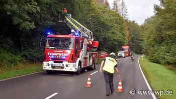 Netphen: Baum droht auf Feuersbacher Straße zu stürzen - Westfalenpost