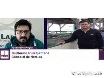 CONCEJAL DE PUERTO NATALES PLANTEÓ EN SESIÓN DE CONCEJO MAL ESTADO EN QUE SE ENCUENTRA LA COSTANERA DE DICHA COMUNA - radiopolar.com