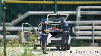 Bambina morsa da cane a Vigarano Mainarda, soccorsa in elicottero - il Resto del Carlino