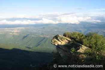 En peligro reservas forestales de Peñas Blancas y Quininí en Tibacuy, Cundinamarca - Noticias Día a Día