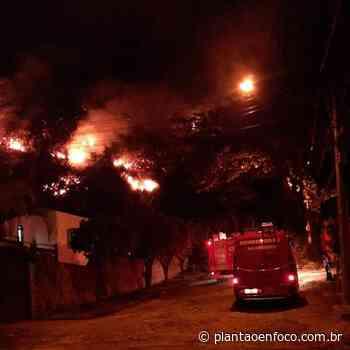 Incêndio atinge área de mata em Itacoatiara - plantaoenfoco.com.br
