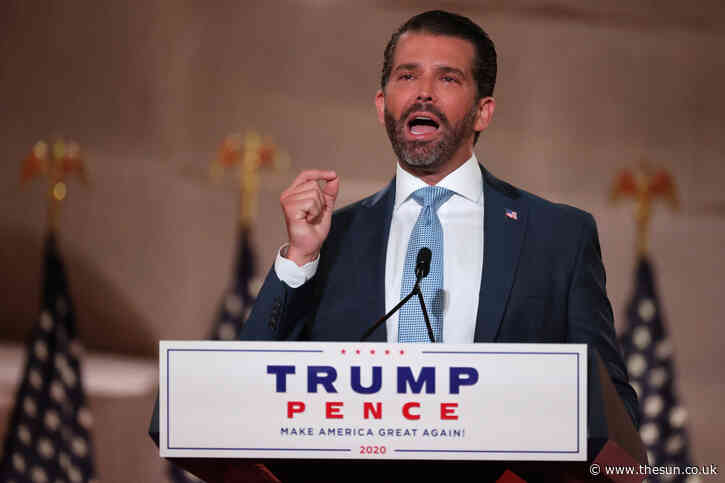 Don Jr slams Joe Biden, Nancy Pelosi, and Dem leaders for 'cheering on the violent left every step of the way'