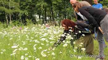 Umweltschutz: 12. Wasser- und Naturschutztag in Spremberg - Lausitzer Rundschau
