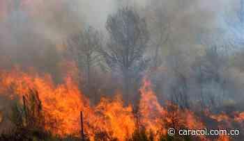 Incendio en Turmequé arrasó seis hectáreas de bosque nativo - Caracol Radio